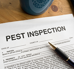 pestinspection